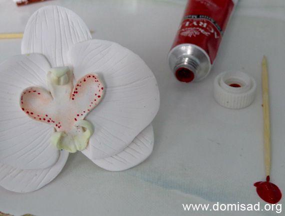 orhideya20