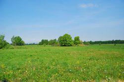Можно ли получить кредит на покупку земельного участка кредит за час наличными без залога