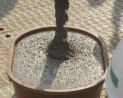 Наливаем бетон