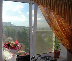 Пластиковое окно в гостиной