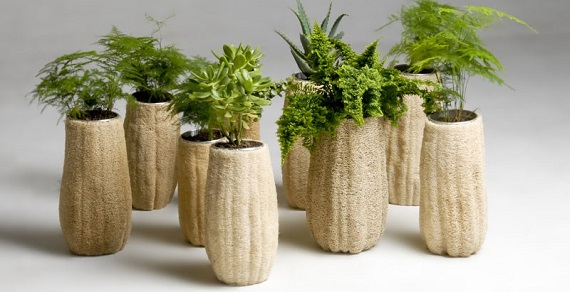 Stretched pots in the same style