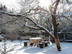 Загородный участок зимой