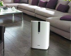 Очиститель воздуха в гостиной