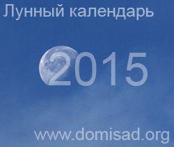 Луна в 2015 году