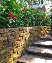 Ступени из камня в саду